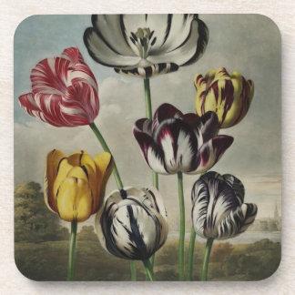 Vintage Floral Tulip Painting Drink Coasters