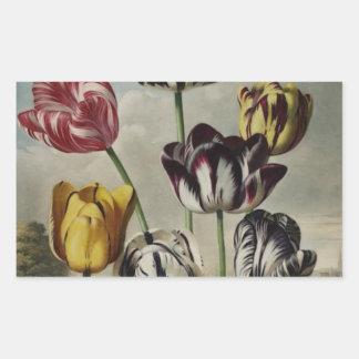 Vintage Floral Tulip Painting Rectangular Sticker