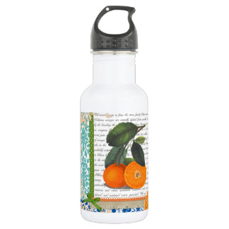 Vintage Florida Orange Fruit 532 Ml Water Bottle