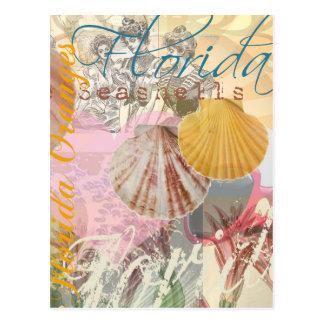 Vintage Florida Travel Beach Shells Collage Postcard