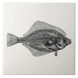 Vintage Flounder Fish Aquatic Fishes Template Tile