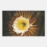 Vintage Flower Night-Blooming Cereus Thornton Rectangular Sticker