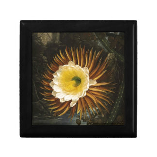 Vintage Flower Night-Blooming Cereus Thornton Small Square Gift Box