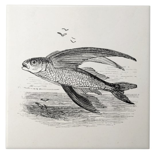 Vintage Flying Fish Antique Personalised Template Tile