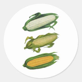 Vintage Food Healthy Vegetables, Fresh Corn on Cob Sticker