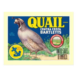 Vintage Food Product Label Postcard