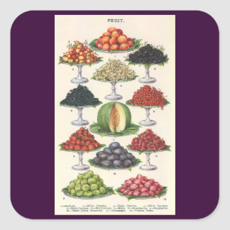 Vintage Foods Assorted Fruit on Trays for Catering Square Sticker