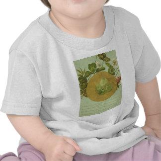 Vintage Four Leaf Clover St Patrick's Day Card Shirts
