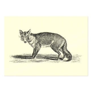 Vintage Foxy Fox Illustration - 1800 s Foxes Business Card