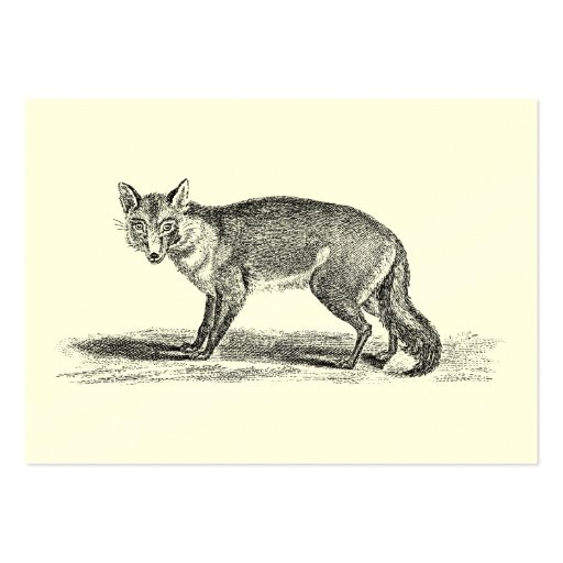 Vintage Foxy Fox Illustration -1800's Foxes Business Card