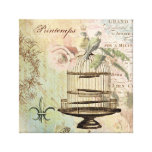 Vintage French birdcage stretched canvas Canvas Print