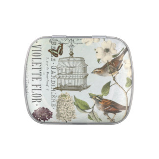 Vintage French birds and birdcage mint tin can Jelly Belly Tins