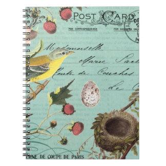 Vintage French Birds notebook