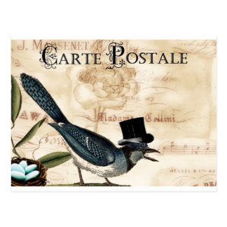 Vintage French Black Top Hart Bluebird Post Card