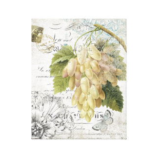 Vintage French Botanical Grapes stretched canvas