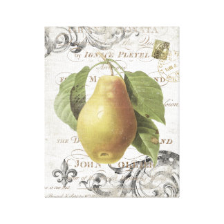 Vintage French Botanical Pear stretched canvas Canvas Prints