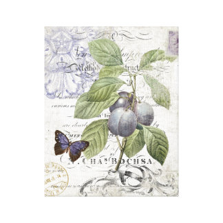 Vintage French Botanical Plum stretched canvas