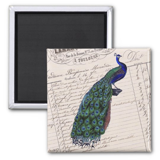 Vintage French Chic Blue Peacock Square Magnet