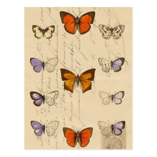 Vintage French Chic Butterflies Pattern Postcards