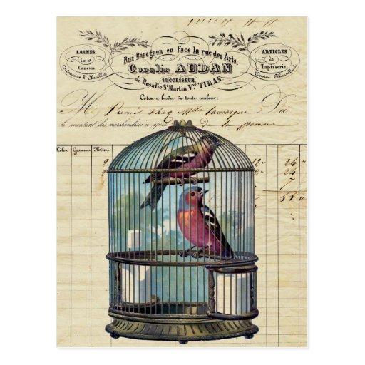 Vintage French Chic Victorian Birdcage Love Birds Postcards