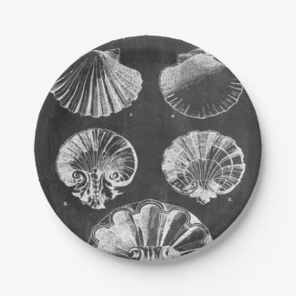 vintage french country chalkboard sea shells 7 inch paper plate
