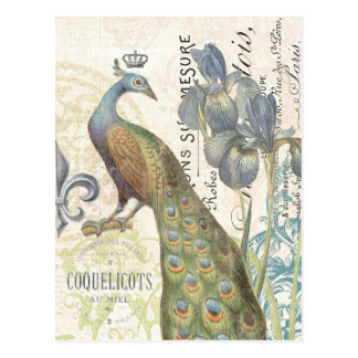 Vintage French peacock floral postcard