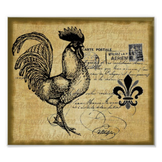Vintage French Rooster On Burlap Poster