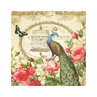 Vintage French Shabby Chic Peacock Stretched Canvas Prints