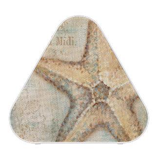Vintage French Starfish Art
