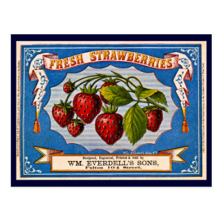 Vintage Fresh Strawberry Ad 1868 Postcard