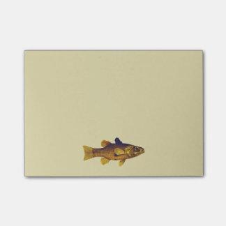 Vintage Freshwater Fish Ilustration Post-it Notes