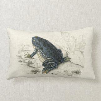 Vintage Frog Lumbar Cushion