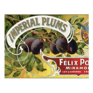 Vintage Fruit Crate Label Art, Imperial Plums Postcard