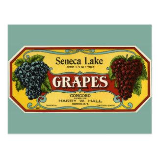Vintage Fruit Crate Label Art, Seneca Lake Grapes Postcard