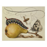 Vintage Fruit Insects Bee Butterfly Caterpillar Print
