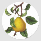 Vintage Fruit Stickers