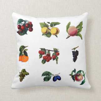 Vintage fruits pillow