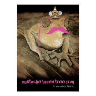 Vintage funny retro mustache monocle latin frog poster