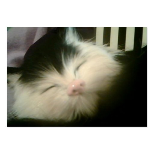 Vintage Fur Black White Kitten Retro Kitty Cat Business Card