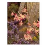 Vintage Garden Art - Norris, Hugh Littlejohn Post Card