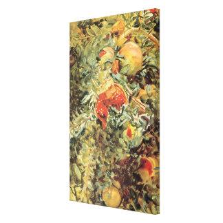 Vintage Garden Art, Pomegranates II by Sargent Canvas Print