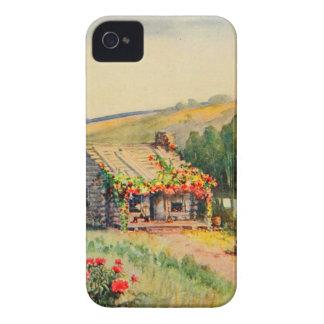Vintage Garden Art - Steele Zulma deL iPhone 4 Cases