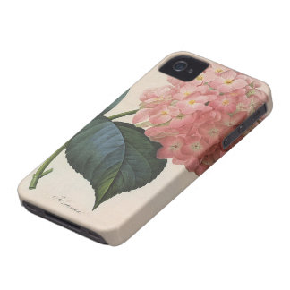 Vintage Garden Flowers, Pink Hydrangea Hortensia iPhone 4 Cases