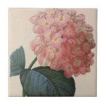 Vintage Garden Flowers, Pink Hydrangea Hortensia Small Square Tile