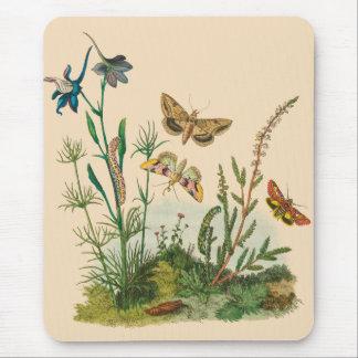 Vintage Garden Insects, Butterflies, Caterpillars Mouse Mat