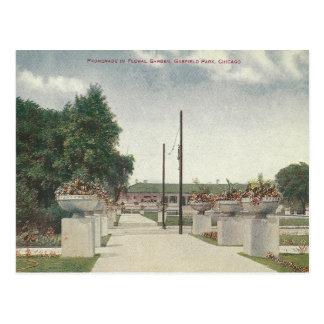 Vintage Garfield Park Chicago Illinois Postcard