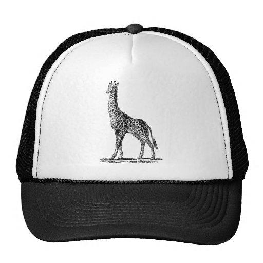 Vintage Giraffe, Black Lineart Illustration Mesh Hats