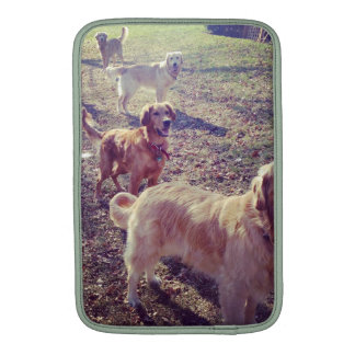 Vintage golden retriever dogs lined up sleeves for MacBook air