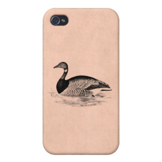 Vintage Goose Illustration -1800's Geese Template iPhone 4 Covers