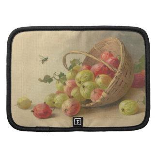 Vintage gooseberries organizer
